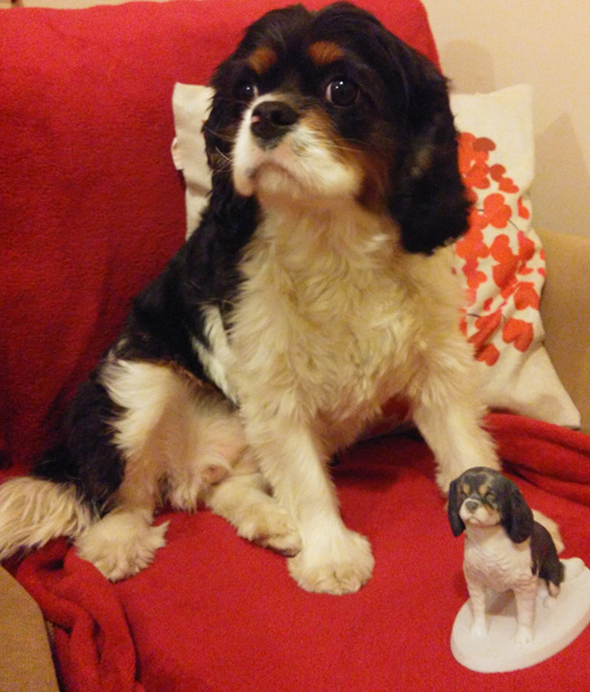 Luna the Cavalier King Charles Spaniel and her custom sculpture