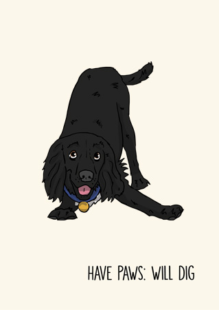 Cocker spaniel funny greeting card by Mon Petit Chien