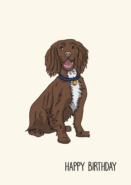 Cocker Spaniel happy birthday greeting card by Mon Petit Chien