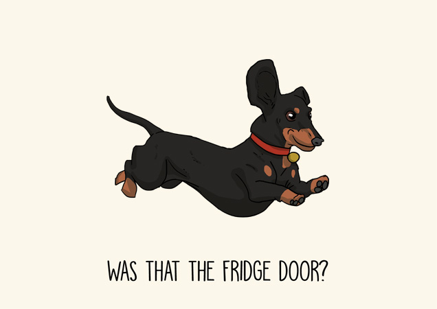 Dachshund funny greeting card by Mon Petit Chien