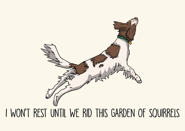 I won't rest until we rid this garden of squirrels: springer spaniel funny greeting card by Mon Petit Chien
