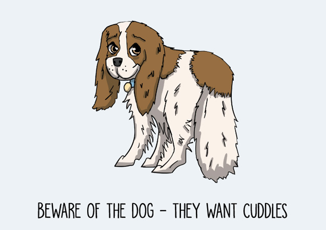Beware of the dog! They want cuddles. Cavalier King Charles blenheim spaniel postcard by Mon Petit Chien