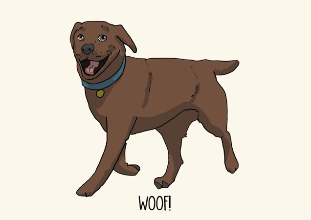 Woof! Chocolate labrador postcard by Mon Petit Chien