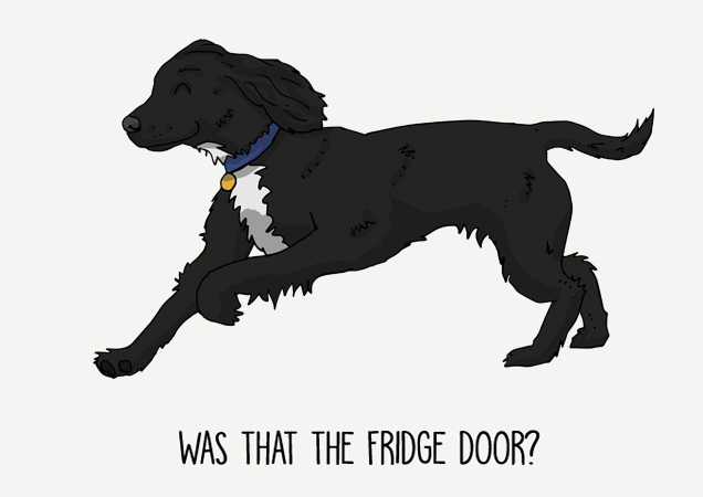 Was that the fridge door? Funny Cocker spaniel postcard by Mon Petit Chien