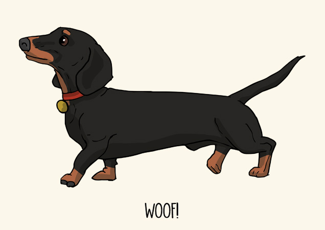 Woof! Dachshund postcard by Mon Petit Chien