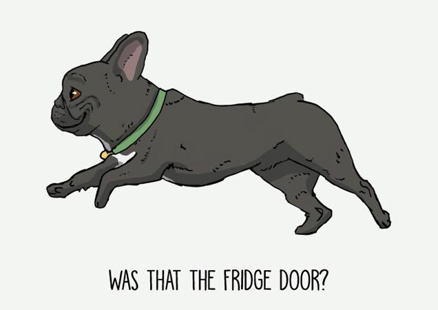 Was that the fridge door? Funny French Bulldog postcard by Mon Petit Chien