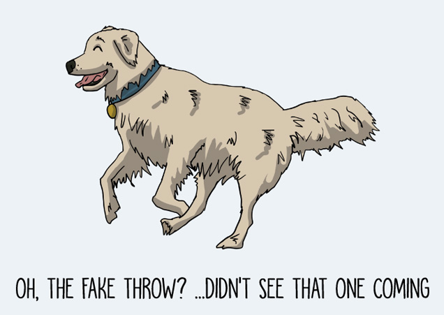 Oh, the fake throw? Didn't see that one coming... funny Golden Retriever postcard by Mon Petit Chien