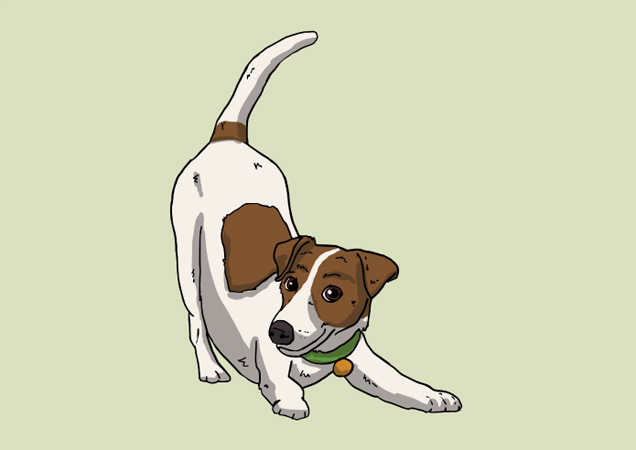 Lovely Jack Russell postcard by Mon Petit Chien