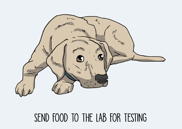Send food to the lab for testing! Funny labrador postcard by Mon Petit Chien