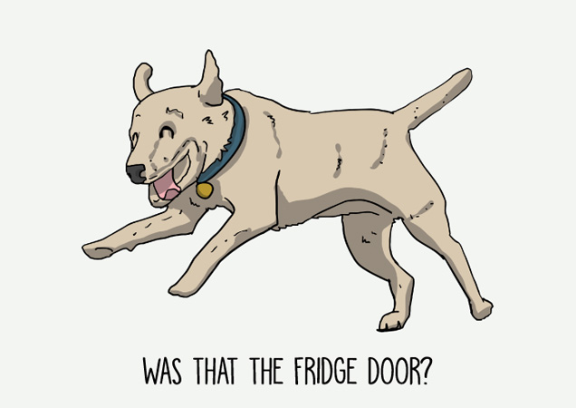 Was that the fridge door? Funny labrador postcard by Mon Petit Chien
