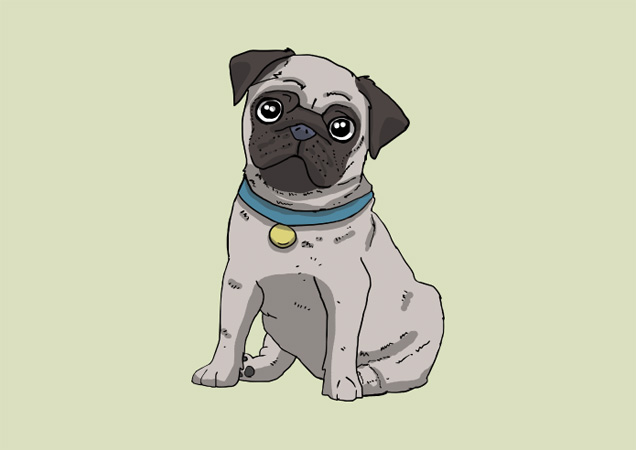 Lovely pug postcard by Mon Petit Chien