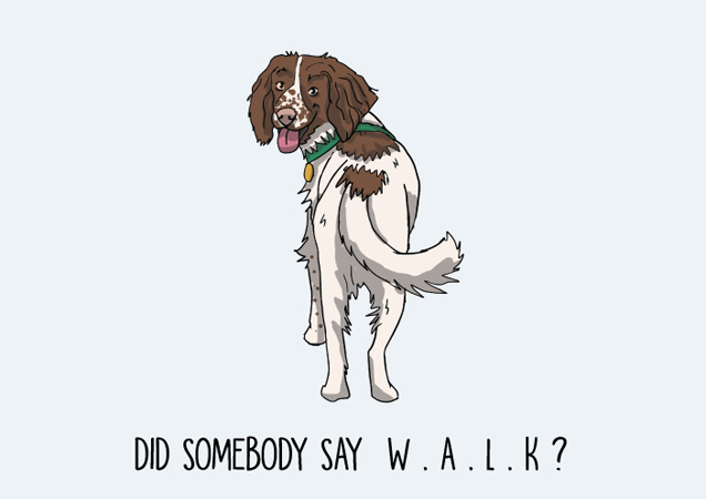 Did somebody say W.A.L.K? Springer Spaniel postcard by Mon Petit Chien